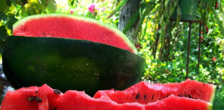 watermelon a natural viagra