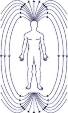 magnetic-field-human-body sleeping position