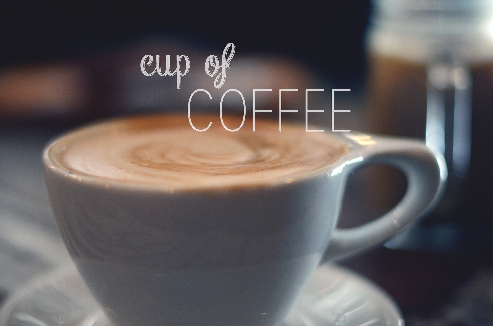 Explore the 1 Cup of Coffee you drink - Fact files on Coffee