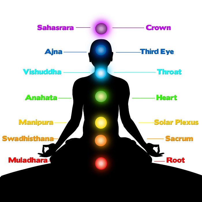 chakras location in human body