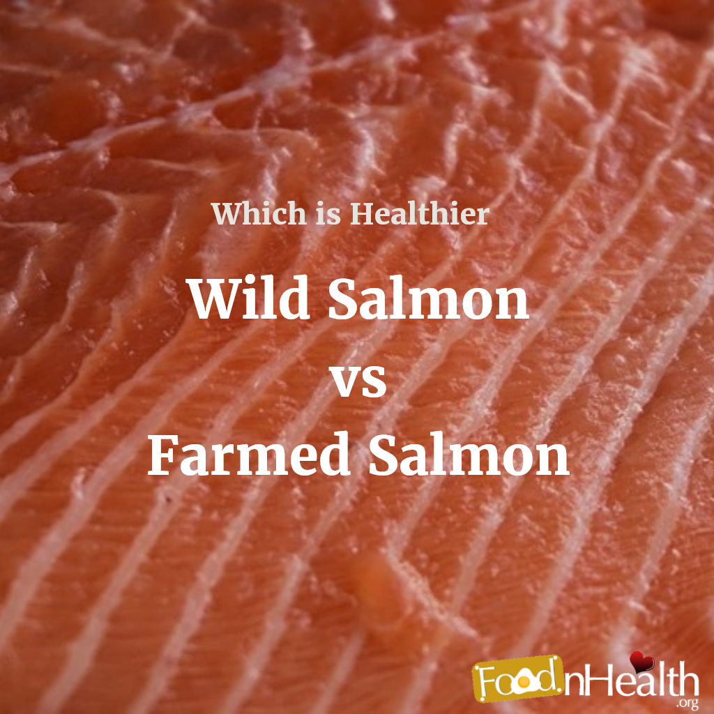 Farmed vs. Wild Salmon