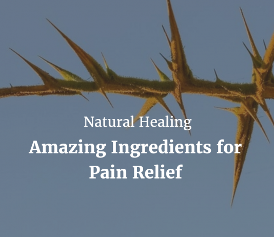 Natural Healing – Amazing Ingredients for Pain Relief