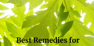 Best Remedies for Thrombocytopenia