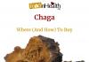 Best Chaga Supplement