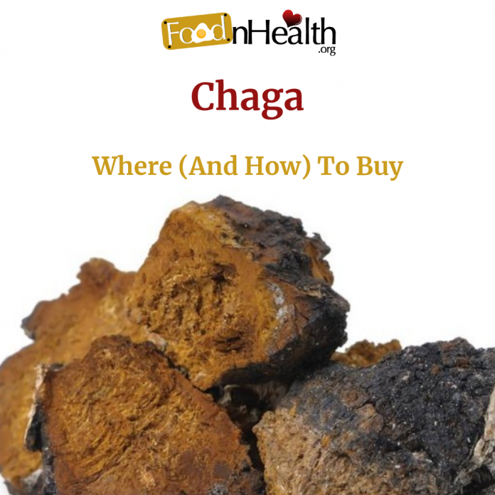 Best Chaga Supplement