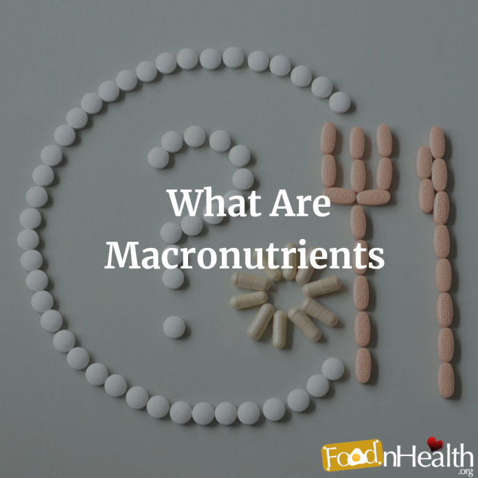 What Are Macronutrients and Why Are They Important