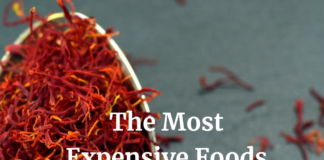 The Most Expensive Foods on Earth
