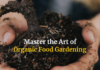 Want To Grow Organic Food? Here Are Some Tips