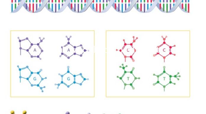 Genomics Can Help Detect Infectious Diseases
