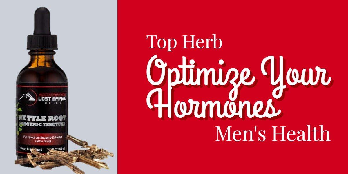 optimize your hormones