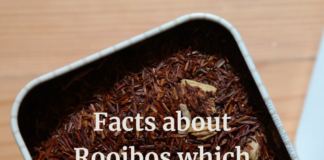 facts about Rooibos which may surprise you