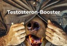 Testogen: Testosteron-Booster