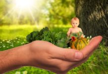 Tips to Avoid Baby Food Allergies