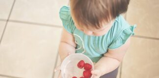 Top 5 Foods to Feed Your Toddler