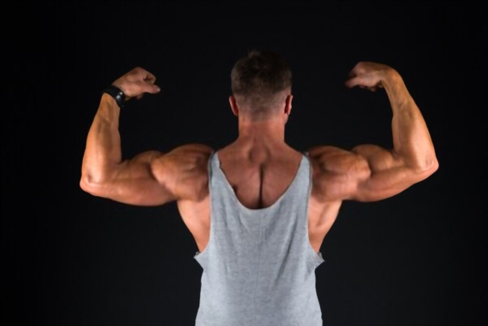 Best Legal Steroids Available For Sale