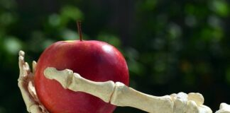 Top Foods for Healthy and Strong Bones